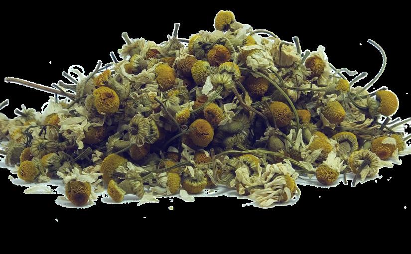 Herbaty ziołowe znane i nieznane